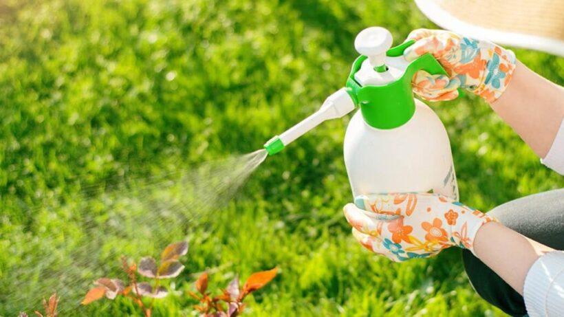Methods of Pest Control
