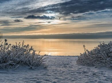 Hot Summers And Chilly Winters By The Sea: How To Take Care Of Your Property in Long Island