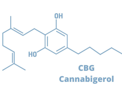What Is Cannabigerol, And How Beneficial Is It?